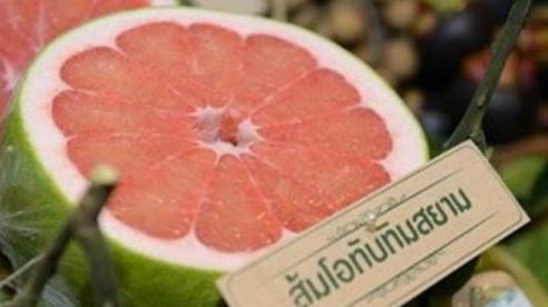 Bưởi ruby Thái Lan giá bán hơn 300.000 đồng/trái vẫn hút hàng