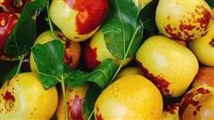 Đắt gấp 5 lần hàng Mỹ, loại quả Trung Quốc được ráo riết lùng mua