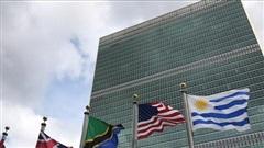 Đại hội đồng Liên hợp quốc lần đầu họp theo hình thức mới sau 75 năm