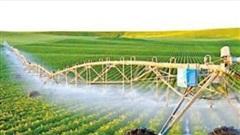 Chuyển mục đích sử dụng đất trồng lúa trên địa bàn tỉnh Long An