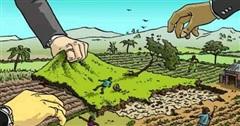 Đất không sử dụng sẽ bị thu hồi?