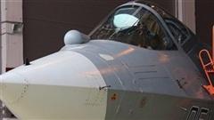 Tác dụng kinh ngạc lớp phủ bằng vàng và thiếc trên Su-57
