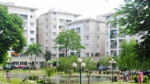 Đề xuất tính thêm tiền sử dụng đất tại chung cư bị HoREA phản đối