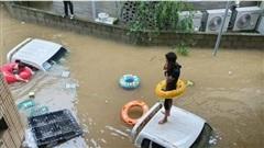 Người dân và gia súc mắc kẹt trên nóc ô tô, mái nhà giữa mưa lũ nghiêm trọng ở Hàn Quốc