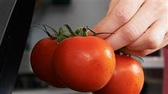 Dấu hiệu khoai tây, cà chua, hành tây...ăn sẽ không có dinh dưỡng mà còn dễ bị ngộ độc