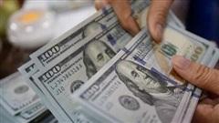 Kiều hối về Việt Nam sẽ giảm hơn 18%