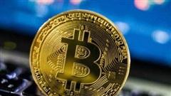 Bitcoin tăng giá kỷ lục: card đồ hoạ thiếu hụt, game thủ lo lắng vì thiếu đi cơ hội nâng đời PC