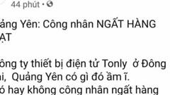 Đăng thông tin không đúng sự thật, quản trị trang 'Quảng Yên 24h' bị phạt 7,5 triệu đồng