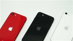 Bất chấp Covid-19, doanh số bán smartphone của Apple chỉ giảm nhẹ