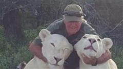 Bị sư tử chính tay mình nuôi lớn tấn công, nhà bảo tồn động vật chết thảm