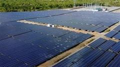 Bóng dáng người nhà Bitexco tại hai dự án điện mặt trời, cuộc đua năng lượng tái tạo chính thức khởi động?
