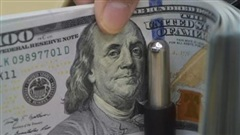 Tỷ giá ngoại tệ ngày 12/9: USD tăng giá