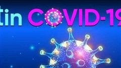 Cập nhật 7h ngày 14/9: Hơn 29 triệu ca Covid-19 toàn cầu, WHO ghi nhận mức tăng kỷ lục. Ấn Độ dự định tiêm vaccine khẩn cấp cho người già