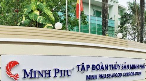 Tập đoàn Minh Phú lên tiếng về vụ Mỹ kết luận MSeafood pha trộn tôm Ấn Độ và Việt Nam