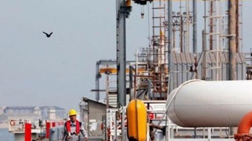 Giá xăng dầu hôm nay 23/10: Đà lao dốc tiếp diễn do tồn kho tăng cao