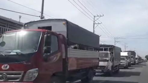 Một gia đình ở miền Tây chặn Quốc lộ 1, gây ách tắc nhiều giờ liền