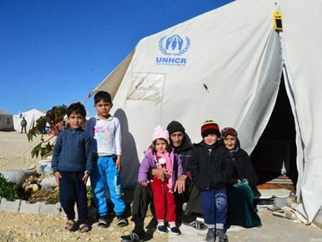 LHQ: Hơn 3 triệu người Syria cần trợ giúp trong mùa Đông tới