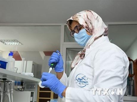 COVID-19: Xét nghiệm tìm kháng thể không cho chính xác tỷ lệ mắc bệnh