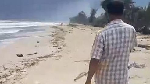 Đi dạo trên bãi biển, lão ngư dân nghèo bỗng đổi đời khi nhặt được 'báu vật biển' trị giá hơn 74 tỷ đồng