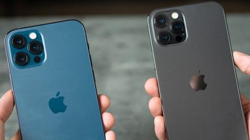 2 màu hot của iPhone 12 Pro Max bản VN/A bắt đầu về hàng 'dồi dào' tại các đại lý sau thời gian khan hiếm