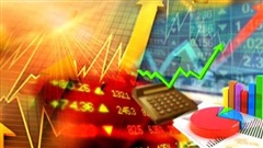 Các chỉ số này cho thấy dịch Covid-19 đang tác động lên kinh tế Việt Nam như thế nào?