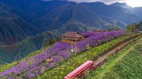Quá nhiều lý do để hội 'nghiện núi, yêu rừng, mê thiên nhiên' nhất định phải đến đây trong mùa hè này
