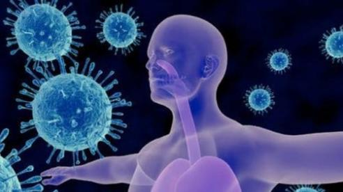 Miễn dịch chéo ngăn ngừa nhiễm COVID-19