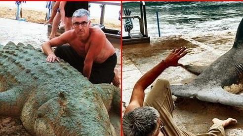 Đưa dàn 'thú cưng' ra bãi biển tắm nắng, nghệ sĩ tài hoa khiến dân tình trầm trồ