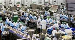 Cần chủ động hơn nữa trong thu hút các tập đoàn FDI lớn