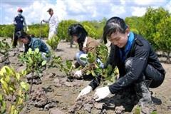 Ngân hàng Thế giới hỗ trợ Việt Nam ứng phó với biến đổi khí hậu