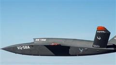 Mỹ dự định tổ chức thi đấu giữa máy bay không người lái và chiến đấu cơ