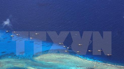 Việt Nam lên tiếng việc Trung Quốc xây cáp ngầm ở Hoàng Sa