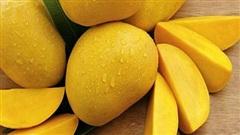 Đừng bao giờ bỏ qua loại trái cây chứa 20 khoáng chất và vitamin, có tác làm đẹp da, tốt cho mắt, ngừa ung thư... trong mùa hè