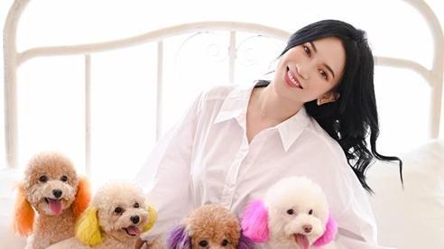 Sĩ Thanh hóa tiểu thư, chụp ảnh cùng đàn cún 'trăm triệu' quá sức đáng yêu