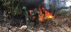 Khẩn trương dập tắt đám cháy rừng tại Nghệ An