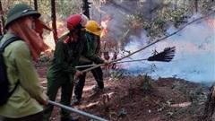 Cháy rừng ở Nghệ An, Hà Tĩnh