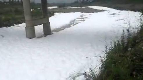 Cả dòng sông bỗng trở nên trắng xóa, bọt tuyết ngập tràn bề mặt, biết nguyên nhân mới thấy tác hại vô cùng đáng sợ