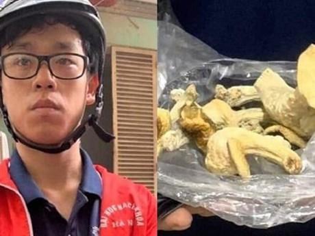 Sản xuất 'nấm thức thần,' nam sinh Đại học Bách Khoa Hà Nội bị khởi tố