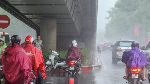 Người dân túm tụm dưới chân cầu vượt trong trận mưa 'vàng'