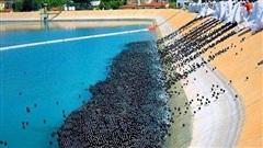 Đổ 96 triệu quả bóng đen xuống mặt hồ trong xanh, tưởng là phá hoại môi trường nhưng biết được ý nghĩa sâu xa thì cả thế giới phải nể phục