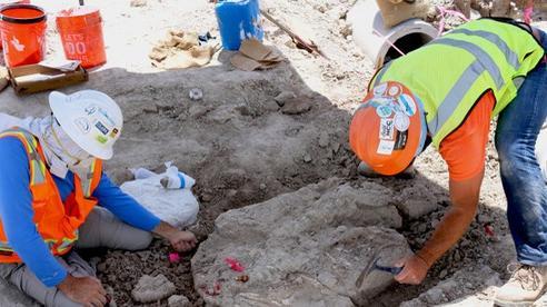 Thành phố rùng rợn: đào đường, 3 lần lọt vào mộ phần 'quái thú'