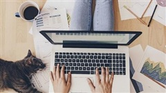 Làm việc từ xa hay tại công sở: Môi trường nào bảo mật hơn?