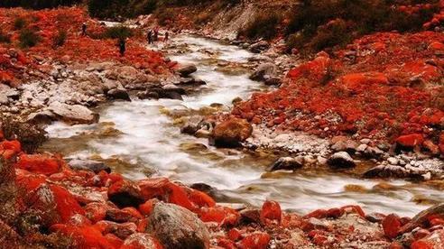 Ngỡ ngàng với 10 hiện tượng kỳ bí của thiên nhiên ở Trung Quốc, đến hiện tại vẫn chưa có lời giải đáp