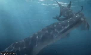 Lạnh người cảnh săn mồi của loài thủy quái có sức mạnh gấp nhiều lần khủng long bạo chúa thời tiền sử