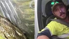Hi hữu: Lái xe quá tốc độ nhưng không bị cảnh sát truy cứu vì lý do không ngờ