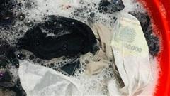 Giặt đồ cho vợ, thanh niên mừng vội khi thấy đồng tiền bỏ quên, dân mạng cảnh báo: 'Coi chừng cú lừa'