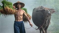 Việt Nam tự hào là một mảng màu rực rỡ trong bức tranh văn hóa của thế giới