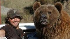 Đoạn ghi âm 6 phút chết chóc: Kết cục thê thảm của người dành 13 năm sống cùng gấu xám