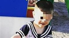Bé trai bị cha dượng sát hại dã man chỉ bởi một chú vịt, nghi phạm khác là anh trai 6 tuổi của nạn nhân gây chú ý hơn
