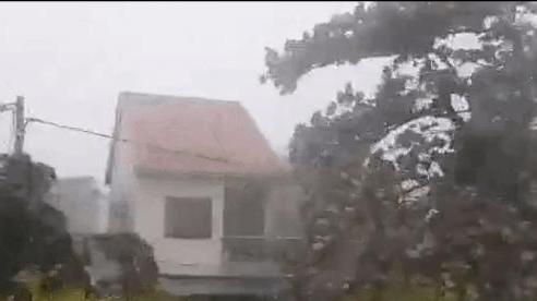 Bão số 5: Gió bão mạnh quật ngã hàng loạt người đi xe máy ở TP Huế